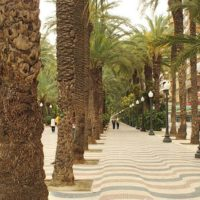 With an annual average temperature of 17 ° C and one of the lowest precipitation rates in Spain. Alicante guarantees about 300 sunny days a year! Only our beloved Malaga can beat this. In this case, Alicante virtually guarantees successful weather and a successful holiday regardless of the date of the visit.